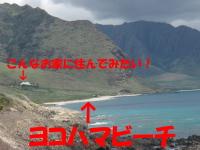 KAENA4.jpg