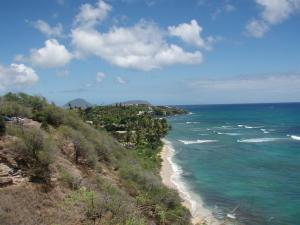 ハワイ3-3.jpg
